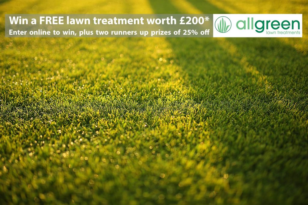 FREE Lawn Treatment a